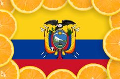 Ecuador flag in fresh citrus fruit slices frame. Ecuador flag in frame of orange citrus fruit slices. Concept of growing as well as import and export of citrus stock photo