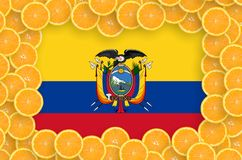 Ecuador flag in fresh citrus fruit slices frame. Ecuador flag in frame of orange citrus fruit slices. Concept of growing as well as import and export of citrus stock illustration