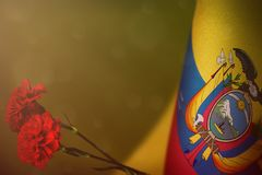 Ecuador flag for honour of veterans or memorial day with two red carnation flowers. Glory to Ecuador heroes of war concept on. Ecuador flag with two red stock photo
