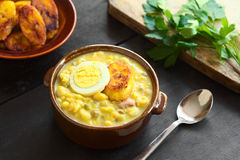 Ecuadorian Fanesca Soup Stock Photography