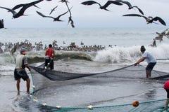 Ecuadorian fishermen pulling in their nets Royalty Free Stock Photo