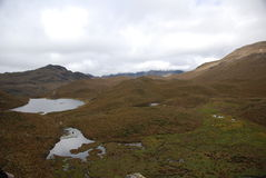 Ecuadorian national park Stock Images