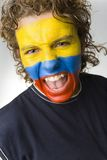 Ecuadorian screaming boy. Young screaming Ecuadorian sport's fan with painted flag on face. Front view. Looking at camera Stock Photos