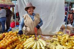 Ecuadoriansk etnisk kvinna med infödd kläder som säljer frukter i en lantlig lördag marknad i den Zumbahua byn, Ecuador Fotografering för Bildbyråer