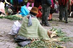 Ecuatoriaanse etnische vrouw met inheemse kleren die groenten in een landelijke Zaterdagmarkt verkopen in Zumbahua-dorp, Ecuador Stock Foto