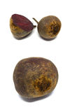 Ed Beet isolated on a white background Royalty Free Stock Photography