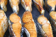 Ed-Fischgrill-Kebab BBQ stockfoto