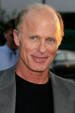 Ed Harris Stock Images