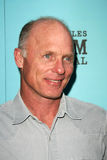 Ed Harris Royalty Free Stock Photos