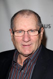 Ed O'Neill Royalty Free Stock Images