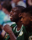 Ed Pinckney, Boston Celtics Arkivbild