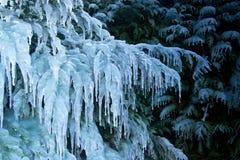 Edad de hielo Fotos de archivo