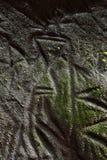 Edakkal HöhlePetroglyphe Stockbild