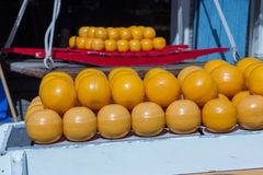 Edam cheese country netherlands Stock Image
