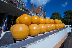 Edam cheese country netherlands Royalty Free Stock Image