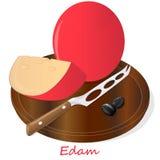Edam cheese food collection illustration set. Edam cheese food collection illustration Royalty Free Stock Photo