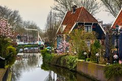 Edam village view. House with blooming spring trees on the canal in a small city Edam in Netherlands. Edam is a small village in the district Nordholland royalty free stock images