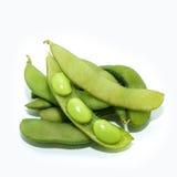 Edamame豆 免版税库存图片