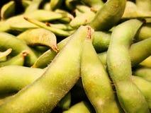 Edamame é ervilhas de pombo, que é o um tipo de ervilha de Japaneses fotografia de stock
