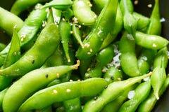 Edamame fresh soya beans close-up macro Royalty Free Stock Image
