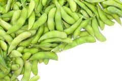 Edamame-Nagen, gekochte grüne Sojabohnenölbohnen, japanisches Lebensmittel lizenzfreie stockfotos