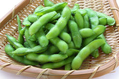 Edamame nibbles Stock Images