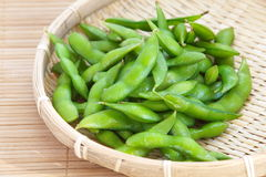 Edamame nibbles, boiled green soy beans Stock Images