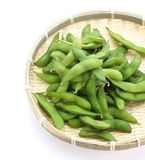 Edamame nibbles, boiled green soy beans, japanese food Stock Photo