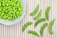 Edamame nibbles, boiled green soy beans, japanese food Royalty Free Stock Photo
