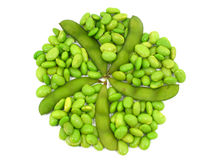 Edamame soy beans shelled and pods Stock Images