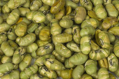 Edamame Soybeans Fotos de Stock