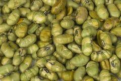 Edamame Soybeans Fotografie Stock