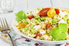 Edamame Tabbouleh Royalty Free Stock Photography