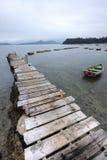 Edele en een boot Stock Fotografie