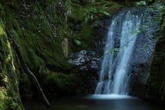 Edelfrauengrab-Wasserfall, Schwarzwald, Deutschland Lizenzfreies Stockbild