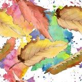 Edelkastanieblatt Blumenlaub des Blattbetriebsbotanischen Gartens Nahtloses Hintergrundmuster Lizenzfreie Stockfotos