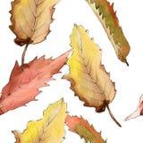 Edelkastanieblatt Blumenlaub des Blattbetriebsbotanischen Gartens Nahtloses Hintergrundmuster Lizenzfreies Stockfoto