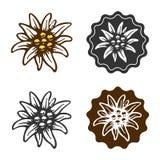 Edelweißblumensymbolalpinismusalpen-Deutschland-Logo lizenzfreie abbildung