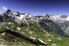 Edelweißspitze Stockfoto