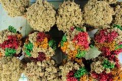 Edelweiss avec la couleur différente Image stock
