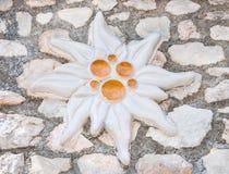 Edelweiss hechas de la arcilla Imagen de archivo libre de regalías