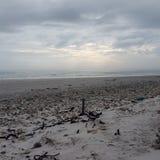 Eden en bahía Imagen de archivo libre de regalías