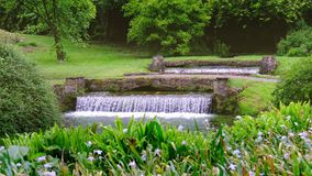 Eden garden fountain 4k waterfall background.  stock video