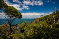 Eden NSW Arkivfoto