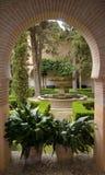 eden ogród obrazy royalty free