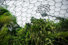 Eden project Royalty Free Stock Photography