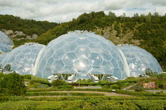 Eden project. Conservation bio-domes in St Austell, Cornwall, UK royalty free stock photography