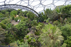 The Eden Project Biodome Stock Image