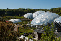 Eden Project Biomes e paisagem Imagem de Stock Royalty Free
