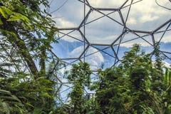 Eden Project Bodelva, Cornwall, England Arkivbild